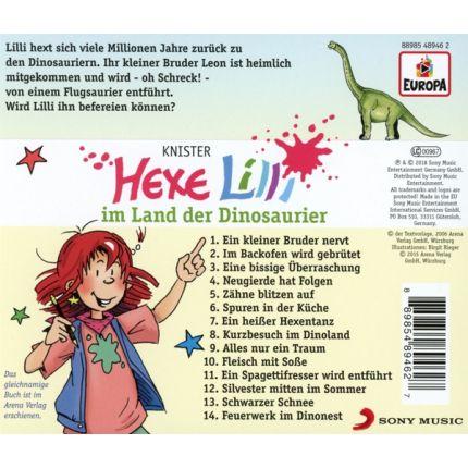 Hexe Lilli 014/im Land der Dinosaurier