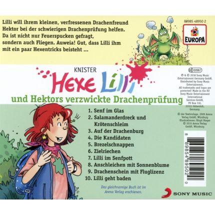Hexe Lilli 017/und Hektors verzwickte Drachenprüfung